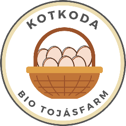 Kotkoda logo